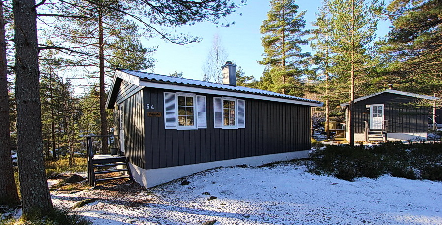 401 Trygvebu i Eikerapen Åseral.  hund ok.