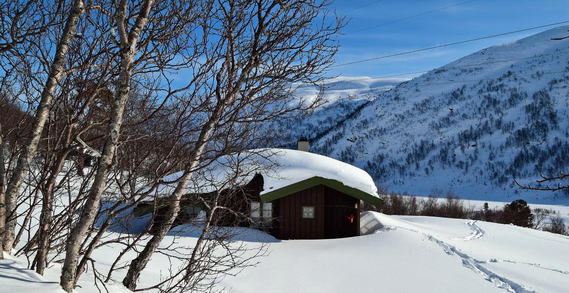 251 Bjørnevann i Valle kommune.