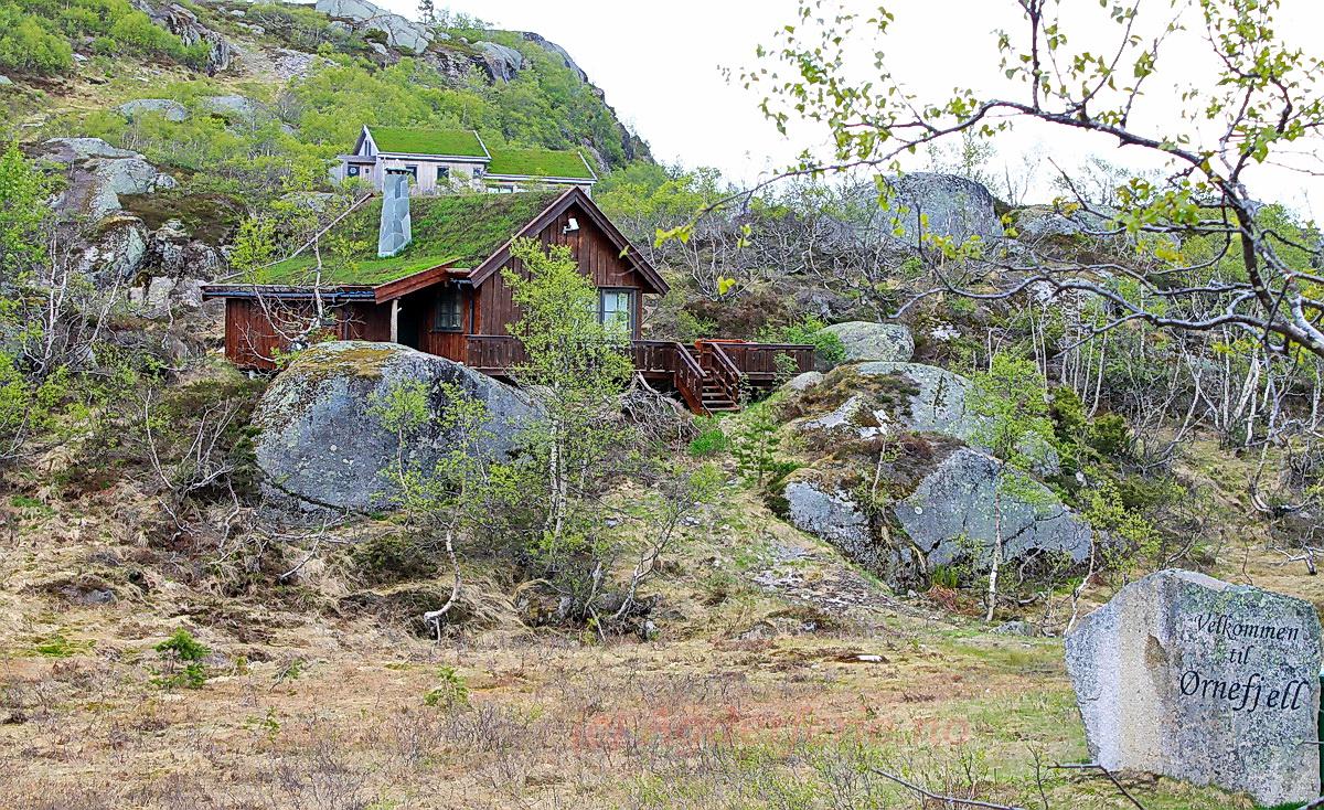 519 Ørnefjellvn. 21, Ljosland. Hund ok.