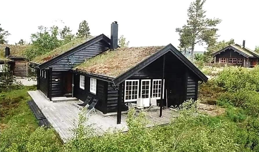 554 Grønalivegen 58, Bortelid